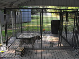 Kennel Deck Photo Gallery
